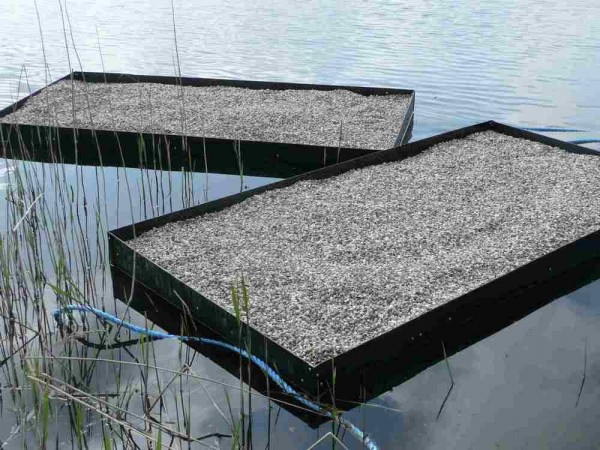 Floating tern nesting Raft 1.22m x 2.44m x 275mm high