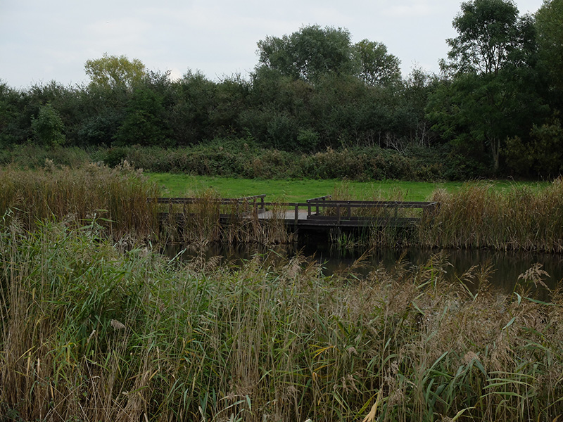 Stanwick Lakes Dipping Platforms