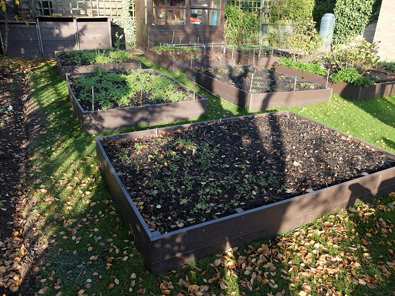 The raised beds turned an unproductive part of their garden into a source of fresh veggies.